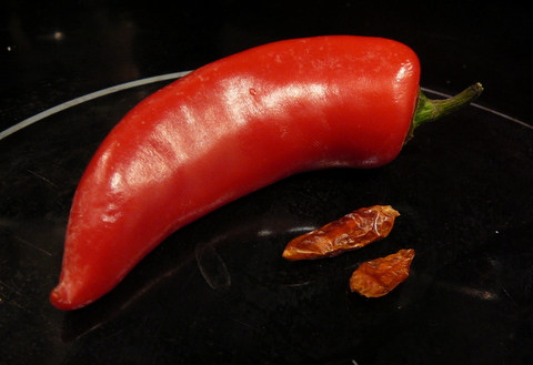 Fresh red chili looming over dried up dark red chili
