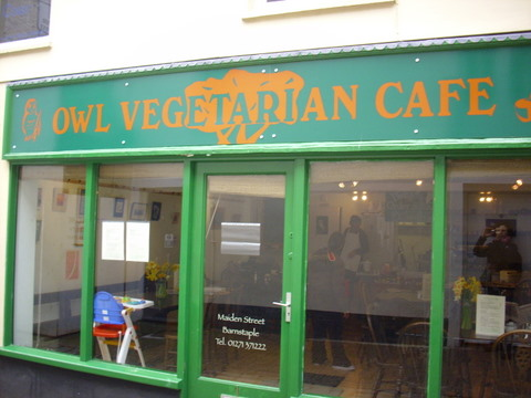 Vegan Owl painted shopfront
