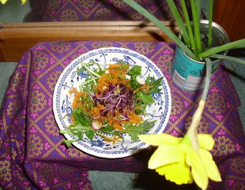 Small bowl of salad (green leaves, carrots and purple radish sprouts)