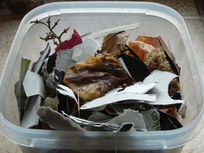 Food waste becoming compost