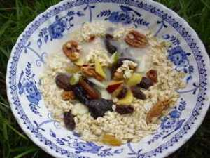 Healthy camping breakfast of raw oats, nuts and dried fruit