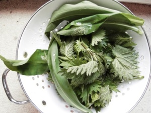 nettles-and-wild-garlic-rinsed-in-colander