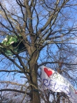 Tree top camps Bristol Metrobus protest