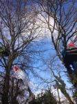 Treetop protest Metrobus Bristol