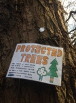 Protected trees sign