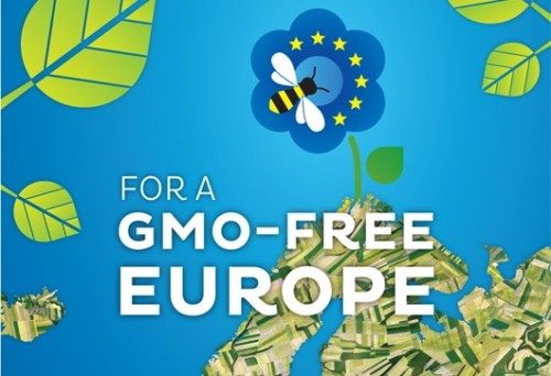 gmo-free-europe-530x363