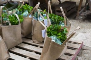 Fresh biodynamic veg and local food for local delivery near Totnes