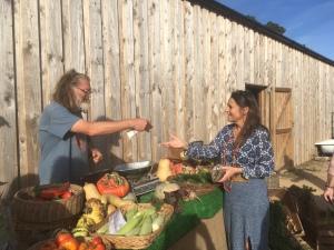 Buying fresh biodynamic produce at Huxhams Cross Farm